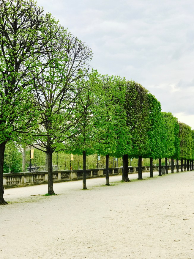 Eiffel Tower & jardin des tuileries