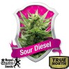 Sour Diesel Feminized Seeds Best 1 (Royal Queen Seeds)