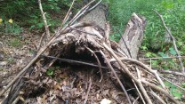 We built some shelters for some critters.