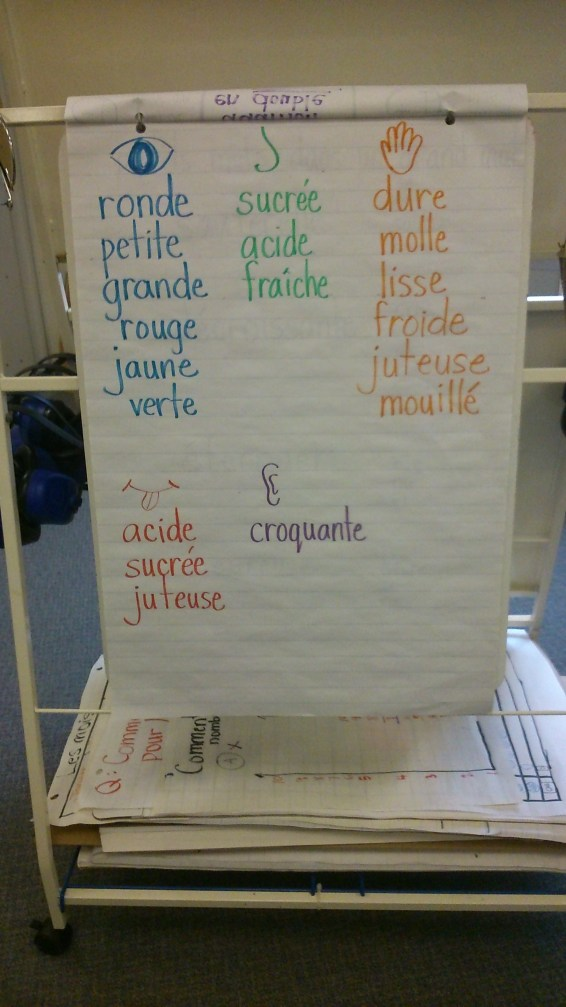 Some of the French words for describing apples.