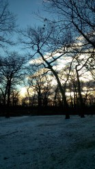 A little sprinkling... Beautiful walk to work in High Park! January 2nd, 2015