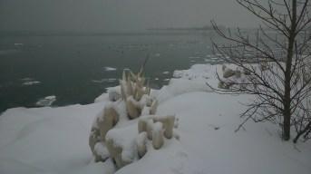 Natural ice art