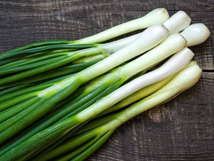 Bunching Onion