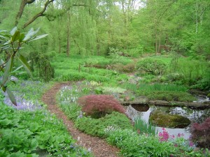 A path at Rocky Hills