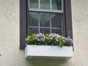 Window box - changed seasonally