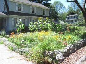 Maria's garden 3