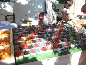 Summer bounty at the market