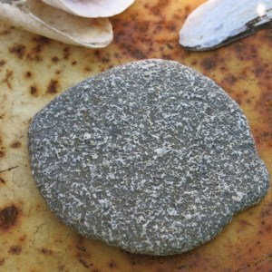 Is it a stone or a sole fish?