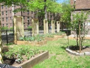 NYC community garden