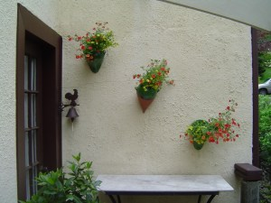 Wall pots in bloom