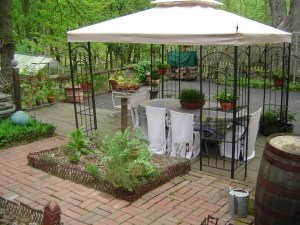 Herb garden and terrace