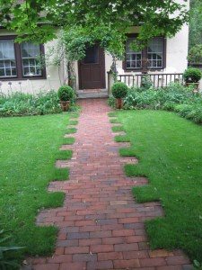 Walkway in pristine lawn? Not at all - its merely a green backdrop for that walkway - full of what many would shudder to have in their lawns!