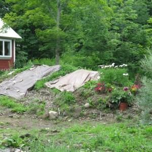 Lot in Vermont III