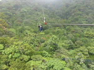 High above the rain forest! Exhilarating!