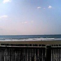 ども!今日も波の無い湘南鵠沼。