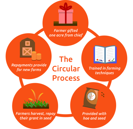 circular-process-farm-infographic