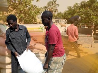volunteers-carrying-seed