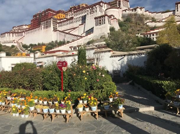 Jokhang-Temple_and-Monastery_Llasa_Temple_2019-10-19-