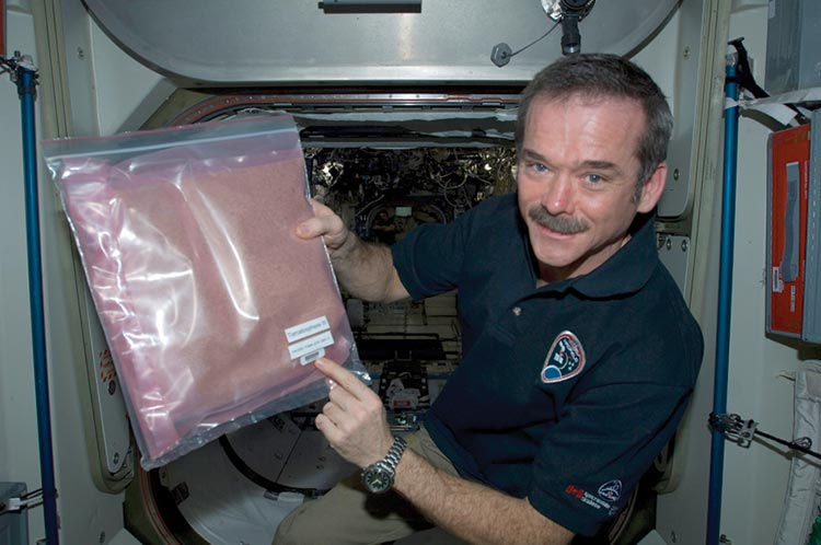 Chris Hadfield, the first Canadian to walk in space, holds a bag of tomato seeds aboard the International Space Station in 2013. The seeds were sent to the ISS as part of the Tomatosphere program, which exposes tomato seeds to space conditions to see if they will germinate afterward. The seeds are then sent to schools where students can grow them and immerse themselves firsthand in the cause of space exploration.