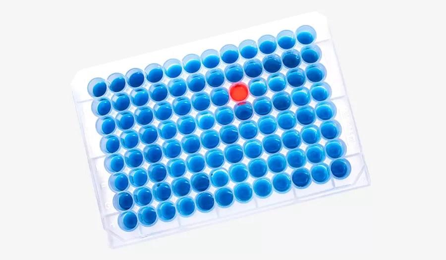 Solução versatil para configuração de PCR