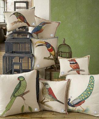 Robshawbirds.jpg