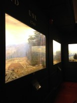 Dioramas in the Fisher Museum