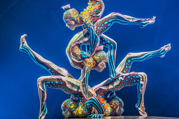 Kurios contortionist