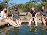 Fellow travelers. Botswana 2013