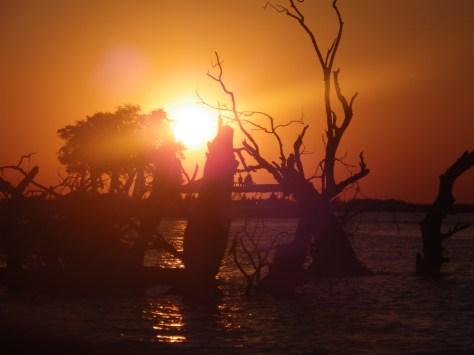 African sunset reminding me of home. Botswana 2013