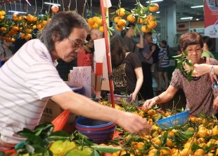 A vendor sells tangerine oranges for Chinese New Year at Chinatown, Singapore