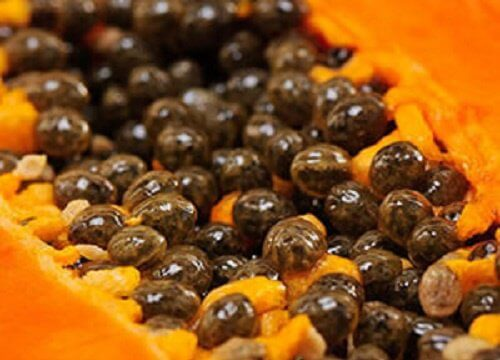 How to eat papaya seeds to detoxify liver kidneys and heal the digestive tract