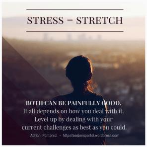 Seekers Portal STRESS STRETCH