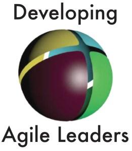 Development Programmes 3