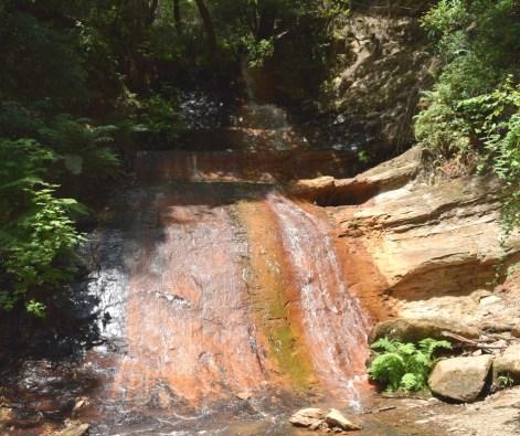 Berry Creek Falls Top