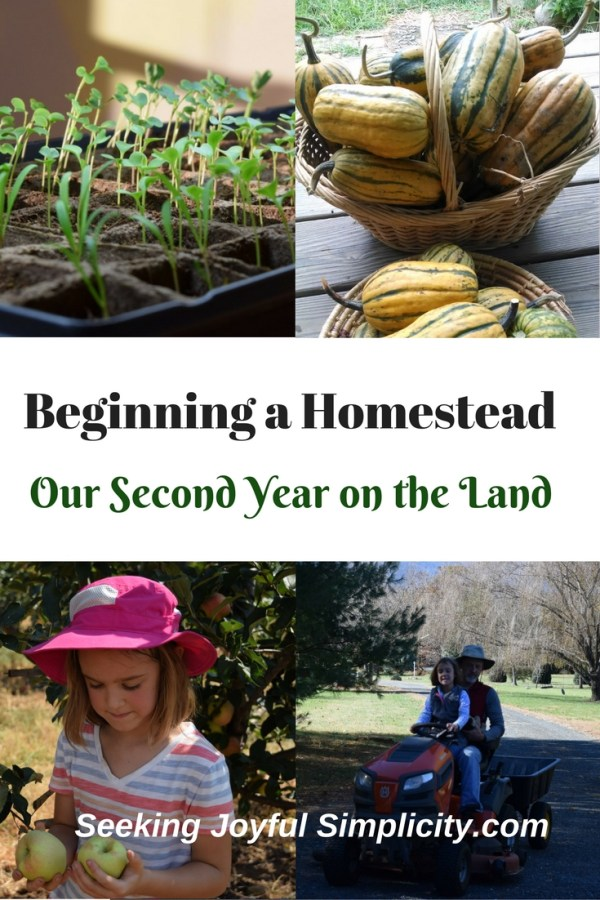 We started our homesteading journey as suburban homesteaders in a townhouse not far from Washington, D.C. Growing vegetables and herbs in containers on our tiny back deck, replacing landscaped azaleas and ivy with tomatoes, cucumbers, and bush beans, learning to can, sew, and cook from scratch were the tasks we started with. As much as we wanted a home in the country and to increase our self-sufficiency, we weren't in a position to move. For five years we dreamed and planned of beginning a homestead in the country. We spent those years budgeting, saving, researching, learning new skills, and preparing ourselves for when we finally found 'our place'. Here is our journey and what we have learned along the way.