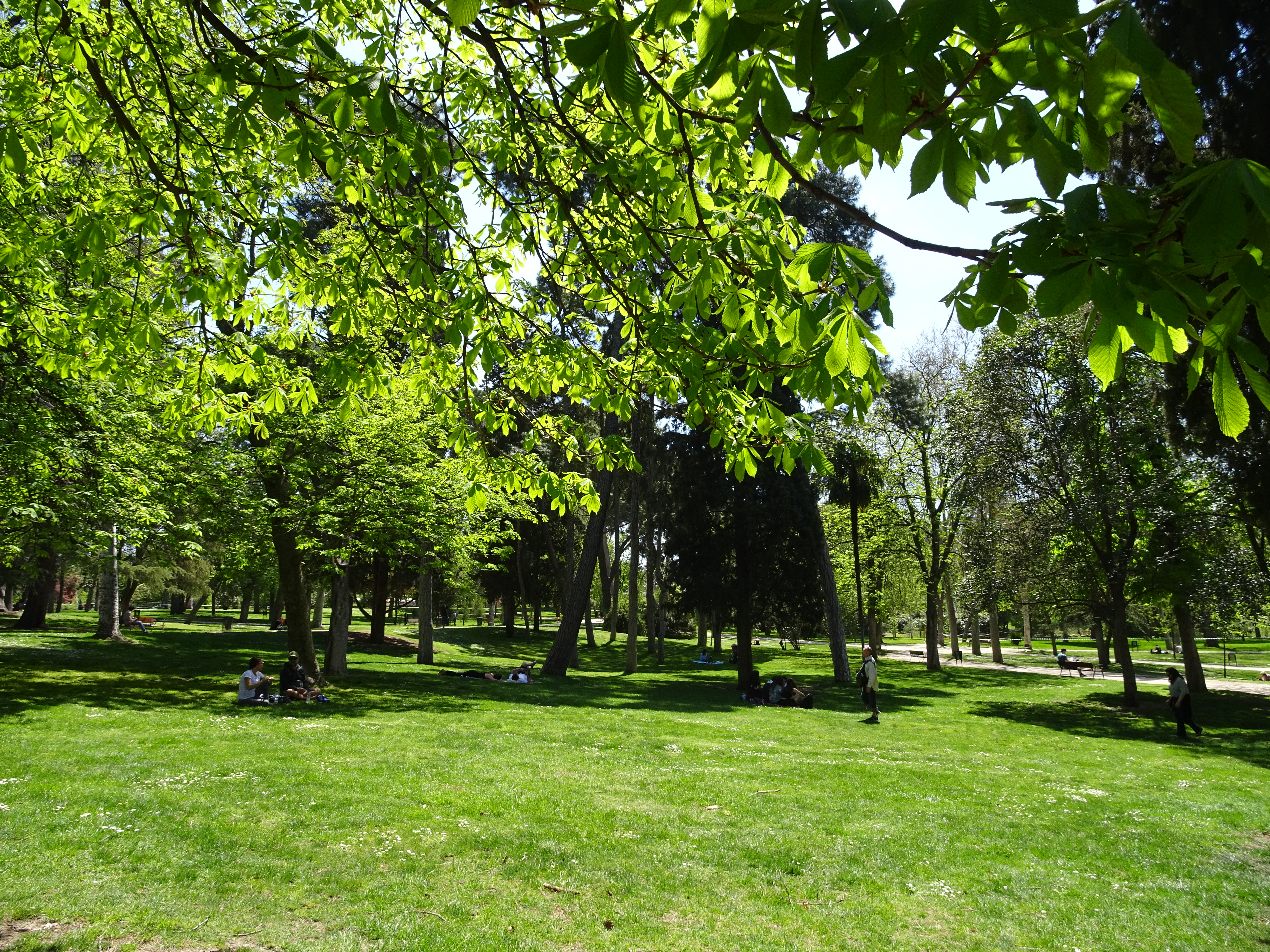 Enjoy a picnic in the park in Spain