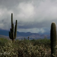 low clouds on the desert hills