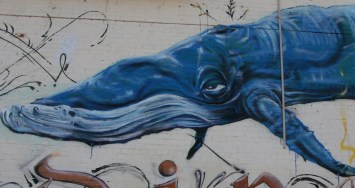 First whale in Find Your Direction mural