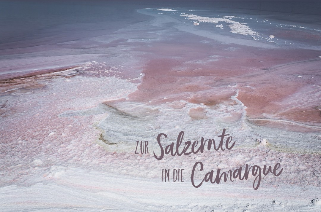 Fleur de Sel Ernte in der Camargue | seelenschmeichelei.de