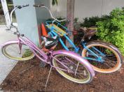 Elektra Cruiser Bikes