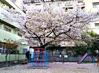 2012-04-15_18-25-09_HDR.jpg