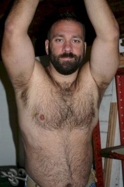 Hairy Men on Men - Hairy Bears - Hairy Chests