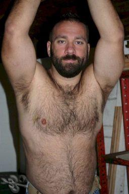 Hairy Men on Men - Hairy Bears - Hairy Chests