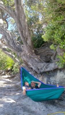 The new hammock
