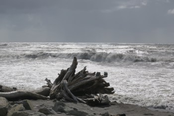 Rauhe Küste bei Hokitika