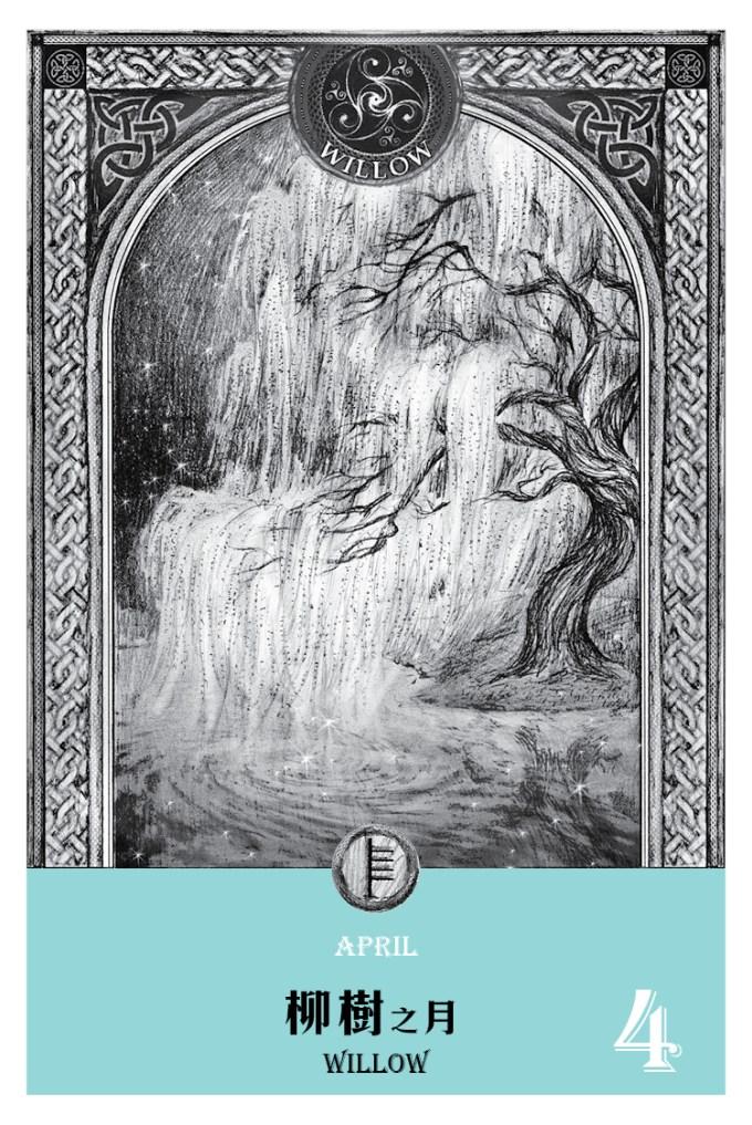 2016魔法手帳-柳樹