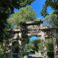 台南公園,有一處能量很清涼的能量。 是鳳凰翅膀的飛羽~