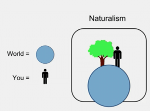 Materialist/Naturalist Worldview