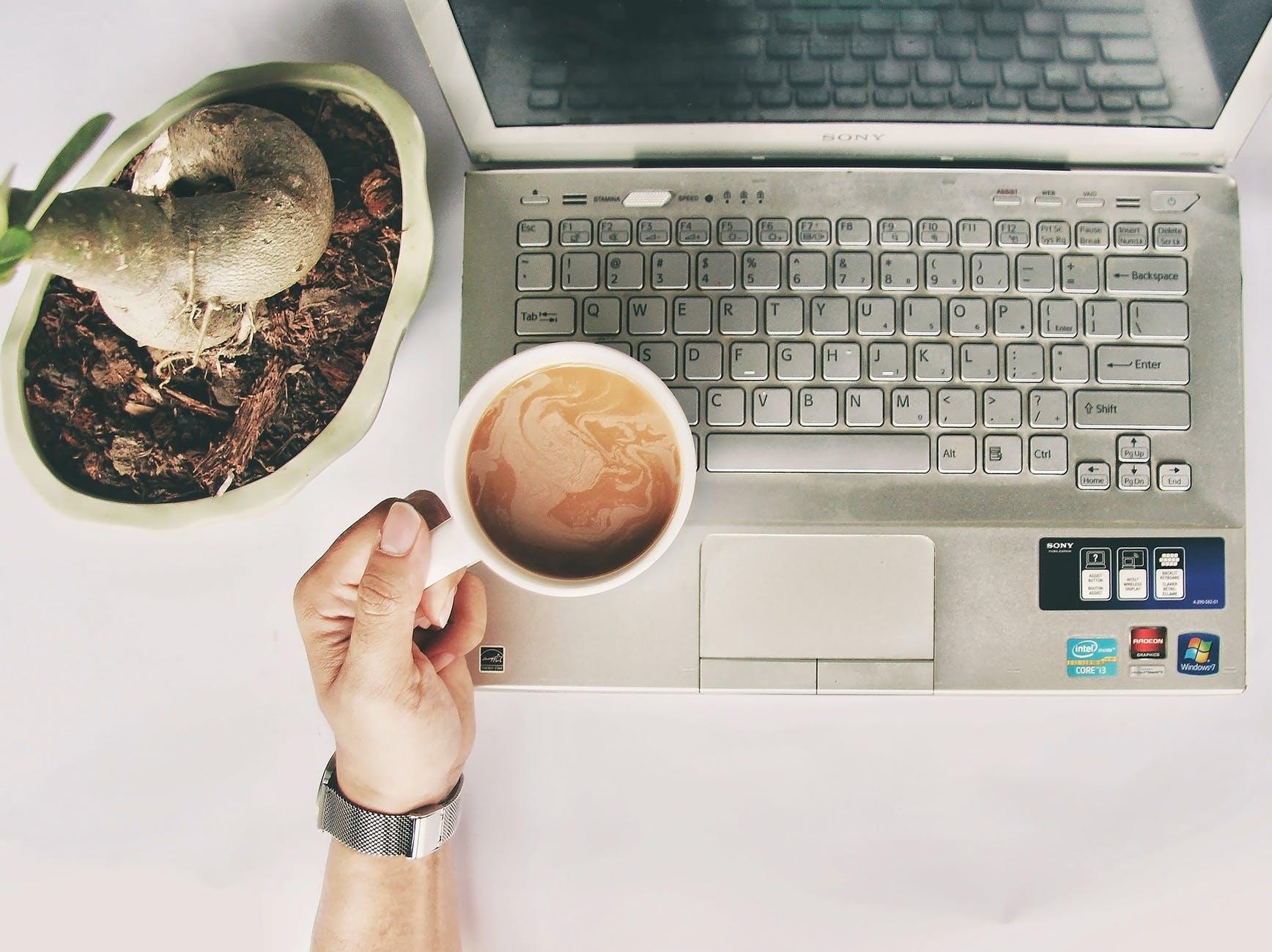 person holding white mug on gray laptop computer