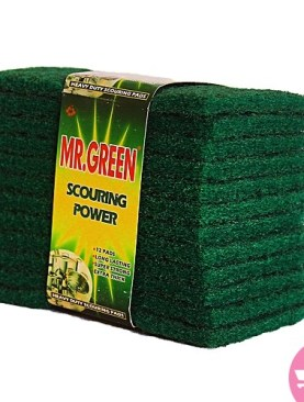 Mr green scourer